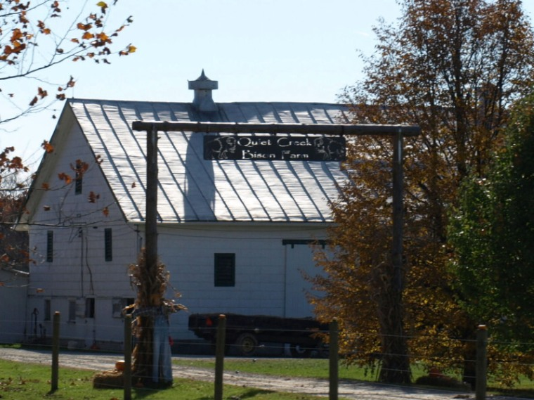 Quiet Creek Bison Farm